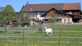 Bauernhofferien in Savigny (de Groote)
