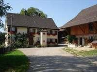 Alpsteinhof