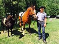 Ponyreiten und Kutschenfahrten