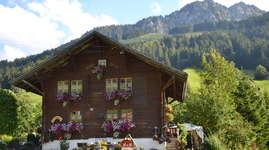 Schuwey's BnB - Chalet uf der Eu: Ferienwohnung