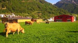 Bauernhof Puntetta: Schlafen im Stroh