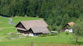 Hinterwiden-Hof: Campingplatz