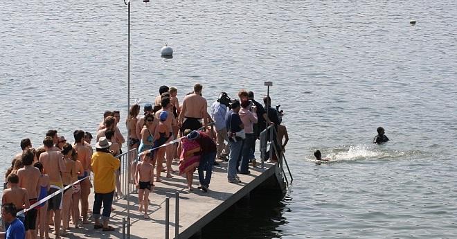 Blaueierschwimmen