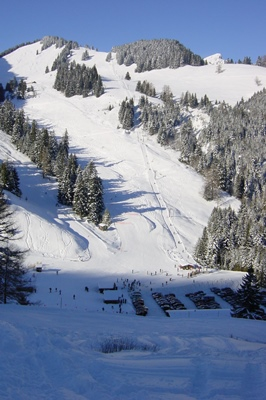 Week end de préventes ski Torgon @ Torgon | Valais | Suisse