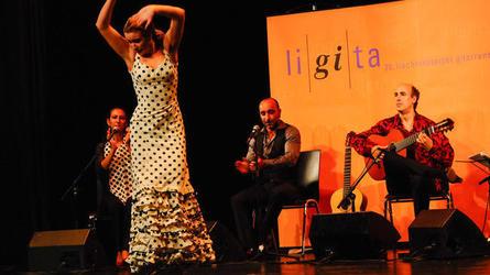 Liechtenstein Guitar Days - LiGiTa