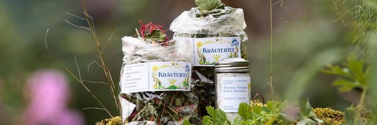 Alpenkräutergarten - 1