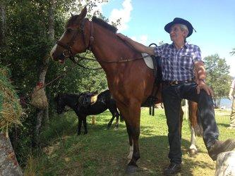 Ponyreiten und Kutschenfahrten - 1