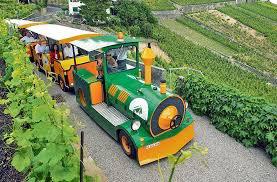 Train touristique Lavaux Express - 1